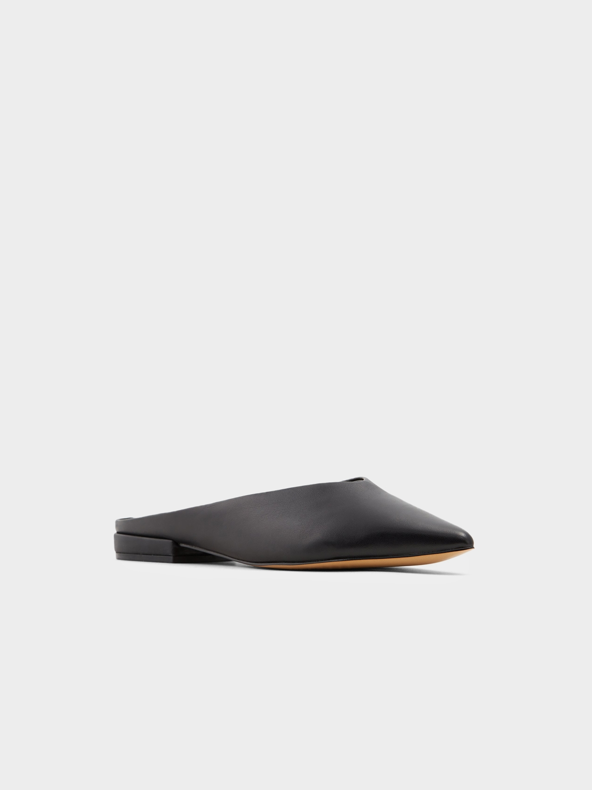 Aldo Nirasa Mule Flats Black