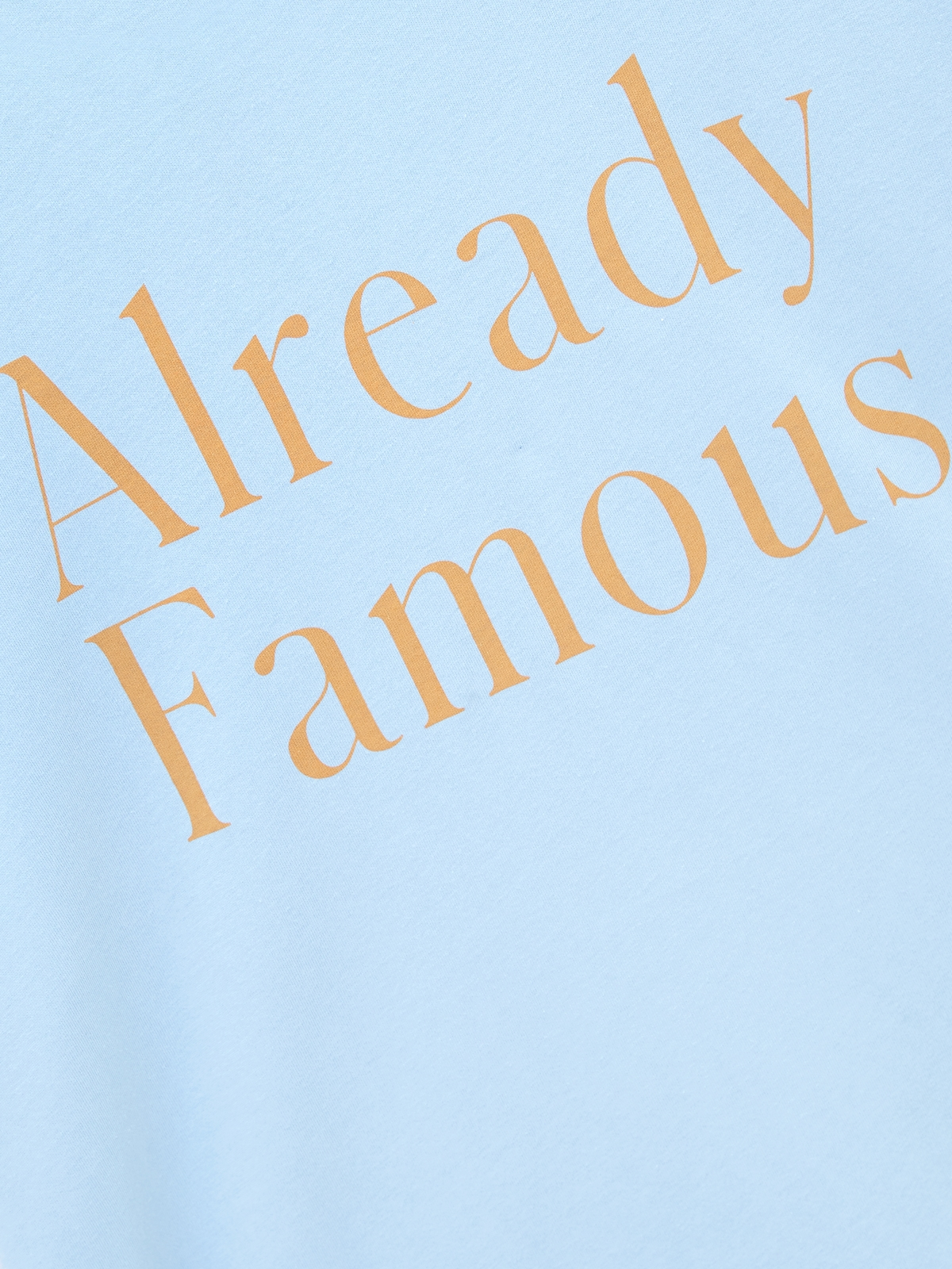 Already Famous Organic Cotton Graphic Tee Blue